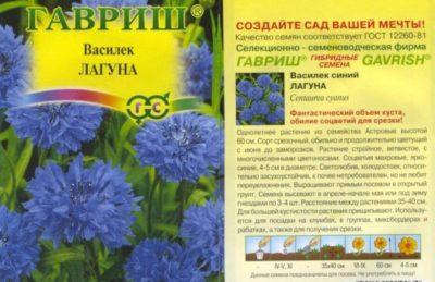 какие цветы можно сажать в апреле в открытый грунт семенами