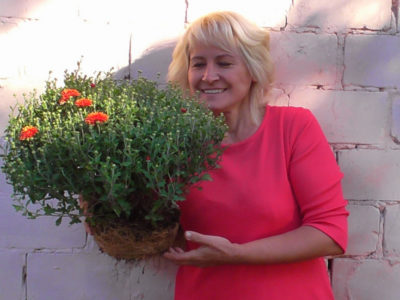 хризантема мультифлора посадка и уход