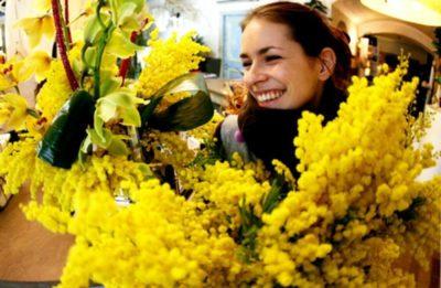 мимоза цветок как дольше сохранить