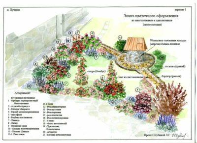 как красиво посадить цветы на даче схемы посадки
