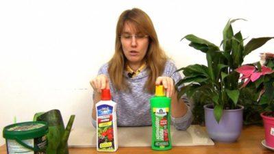 универсальное удобрение для комнатных растений