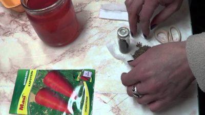 обработка георгин перед посадкой